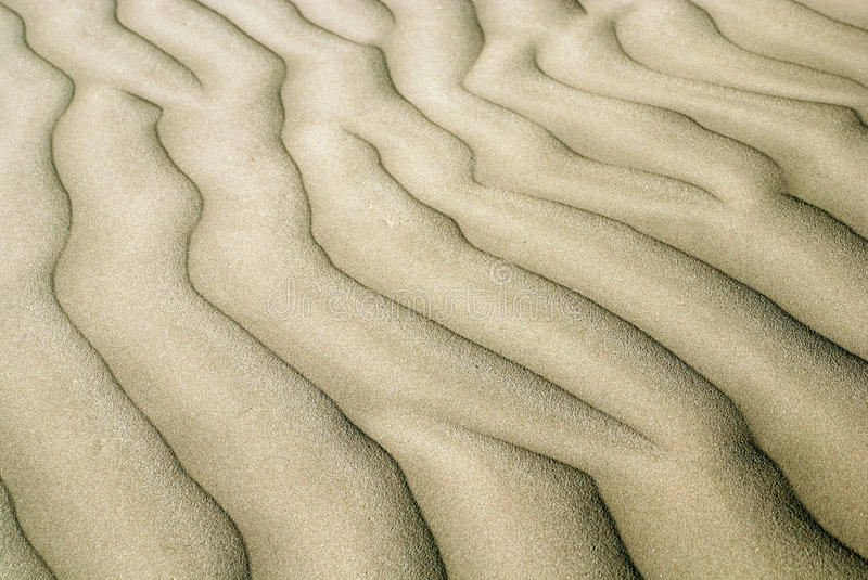 Sand ripples. A wave of ripples in the sand stock images