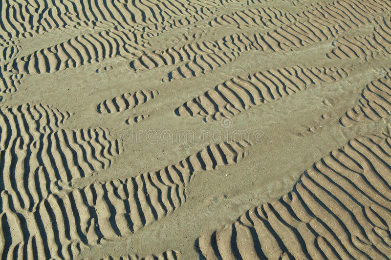 Sand ripples. On beach creating nice linear patterns royalty free stock image