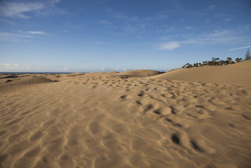 Sand Ripples royalty free stock photos
