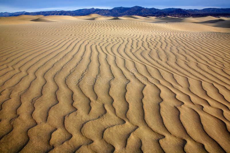 Sand Ripples, Death Valley. National Park, California royalty free stock images