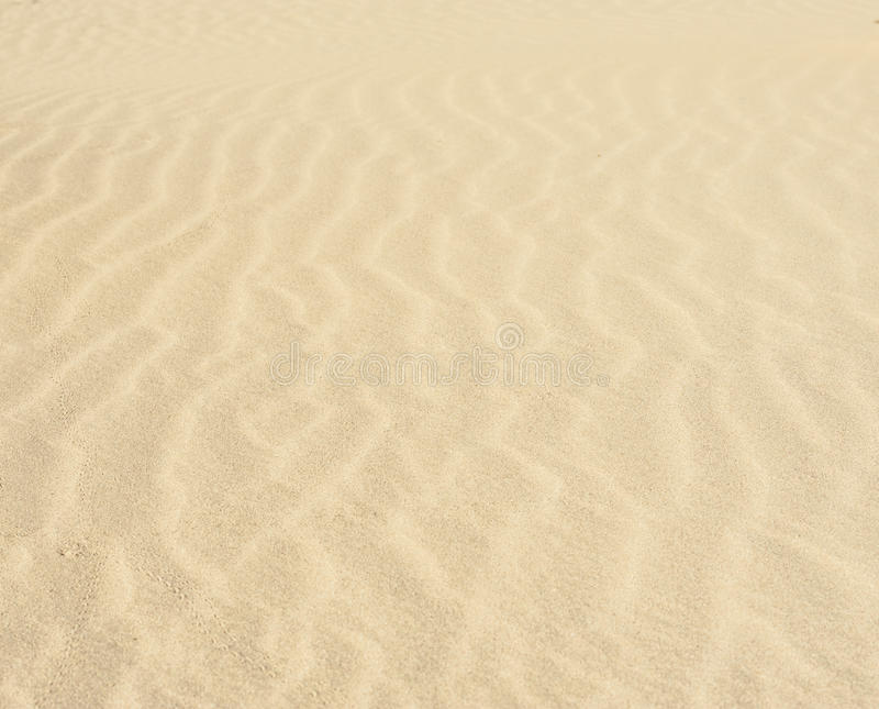 Download Sand ripples in a desert stock photo. Image of lifeless - 39513808
