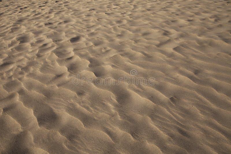 Sand Ripples royalty free stock photo