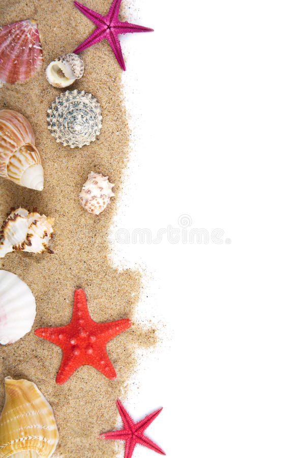 Download Sand And Sea Shells Isolated Stock Image - Image of coastline, border: 18899707
