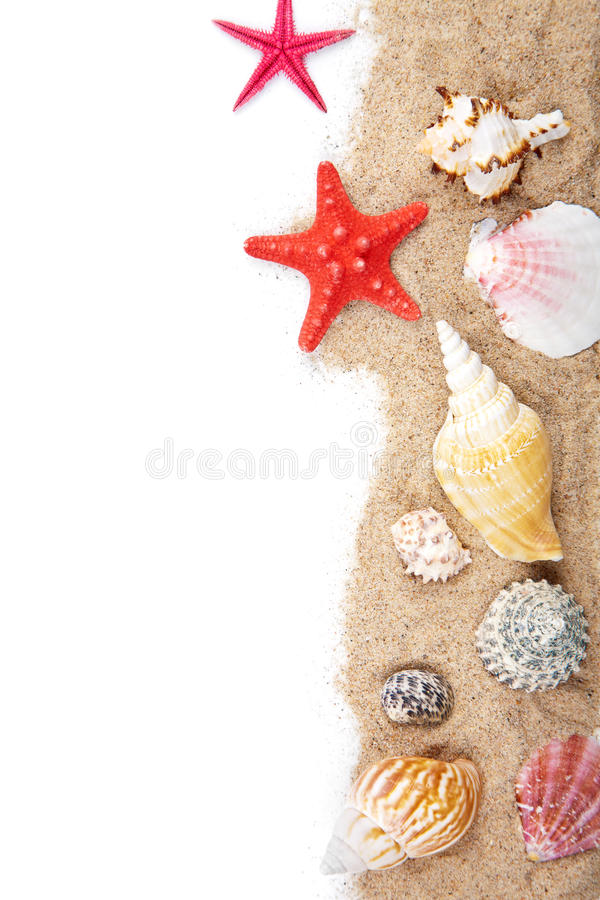 Download Sand And Sea Shells Isolated Stock Photo - Image: 28635308