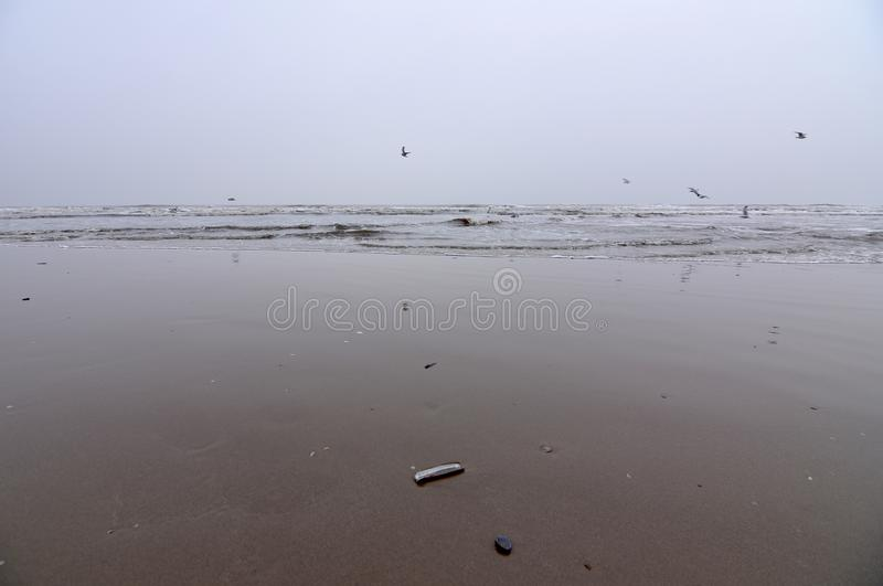 Sand sea and snow royalty free stock photography