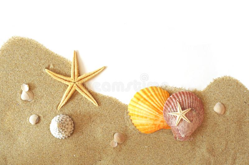 Sand and seastar border stock image