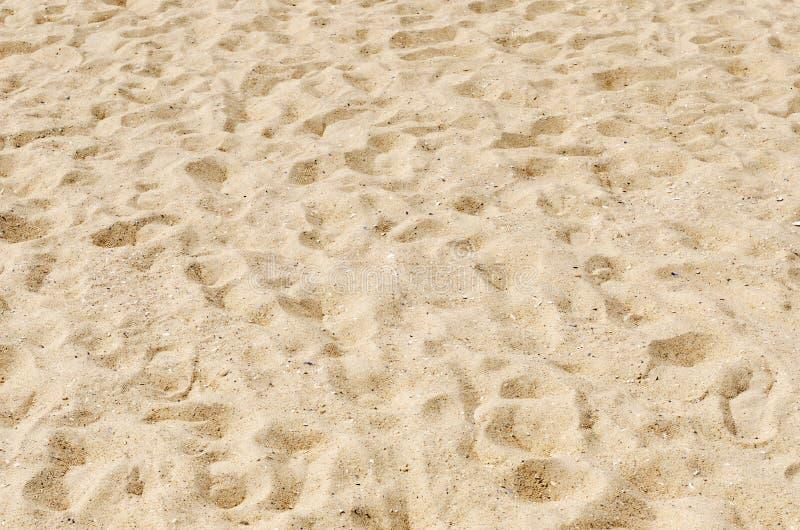 Sand som bakgrund royaltyfri fotografi