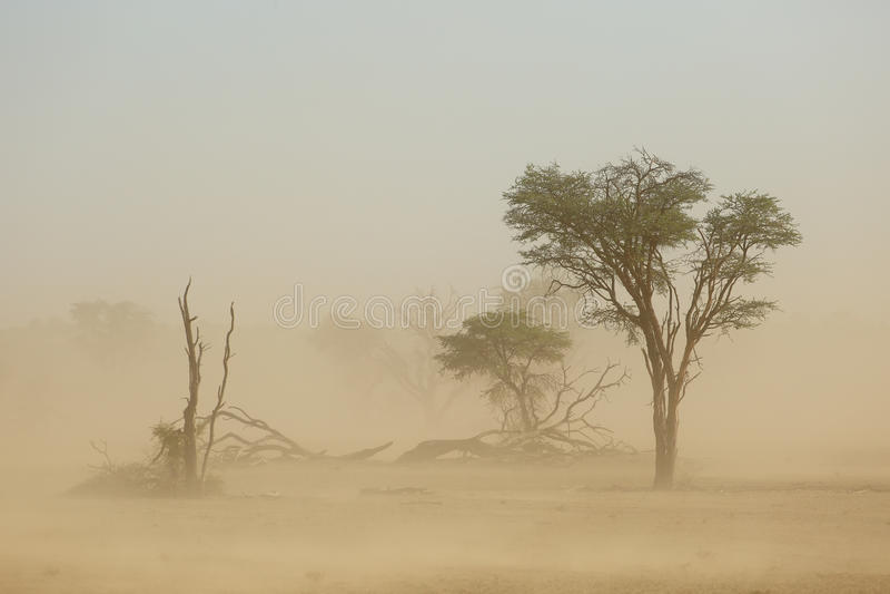 Sand storm - Kalahari desert stock photo