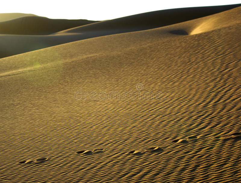 Sand Structures In The Sahara Royalty Free Stock Photography