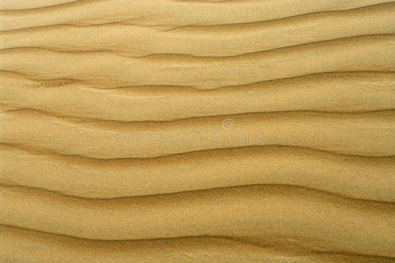 Sand Texture. stock photos