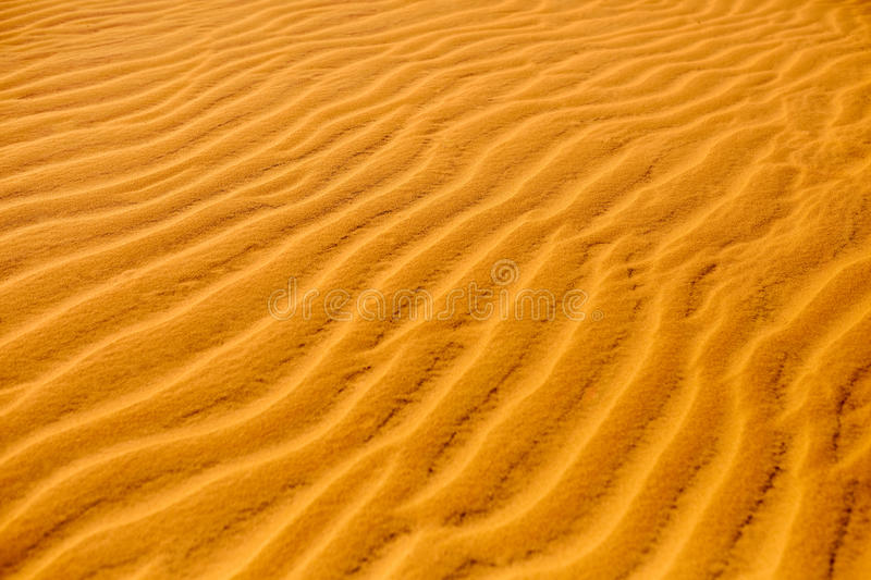 Sand Texture Background. Pattern of dunes in desert. Nature details. Sand Texture Background. Close up view of orange ripple sand pattern of dunes in desert royalty free stock photo