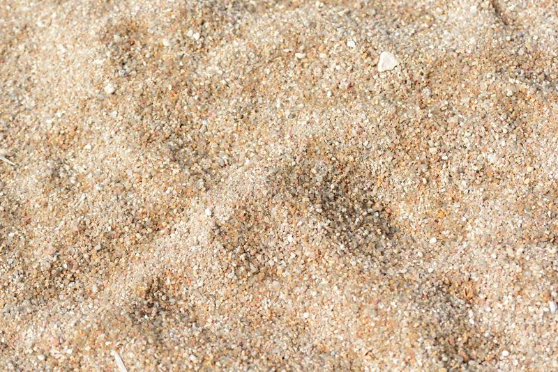 Sand texture on the beach. Natural abstract background stock image