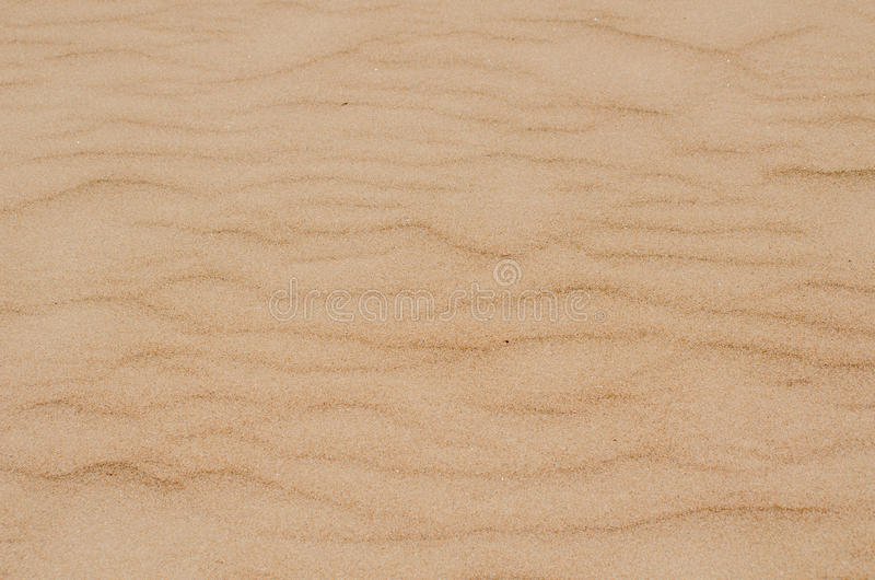 Sand texture. The sand on the beach in Italy royalty free stock images