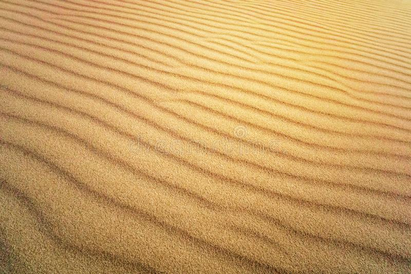 Sand Texture. Brown sand. Background from fine sand. Sand background. yellow dune in the sun. The sun shines on the sand royalty free stock images
