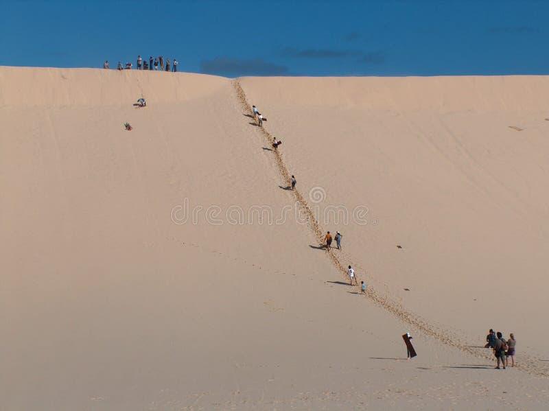 Download Sand Tobogganing stock image. Image of moreton, australia - 2879925