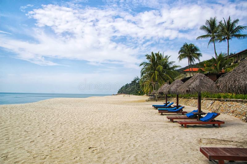 Sand tropic palms and sunbeds. Best Kuantan beach resorts. Luxury vacation at crystal clear waters and pristine beaches royalty free stock image