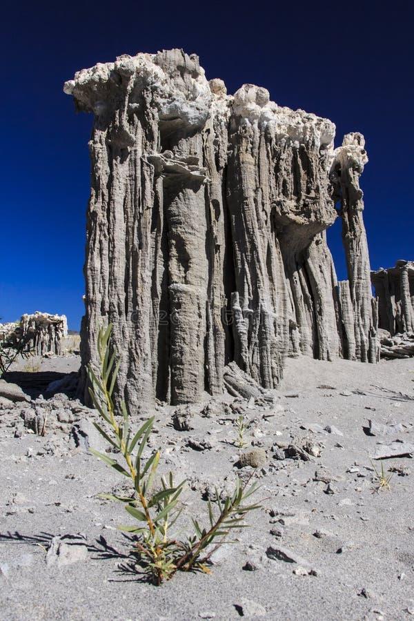 Download Sand Tufas at Mono Lake stock image. Image of beach, navy - 26330361