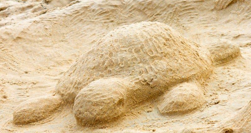 Sand Turtle royalty free stock photo