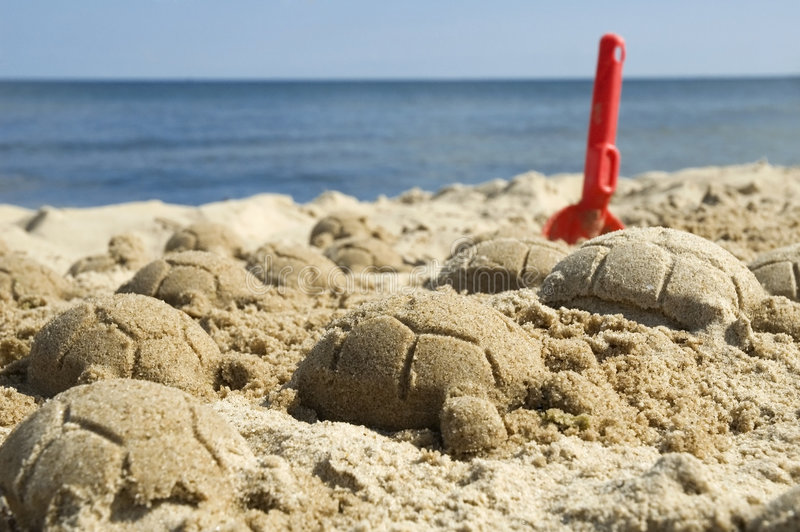 Sand turtles. Summer and beach scenic. childhood stock photos