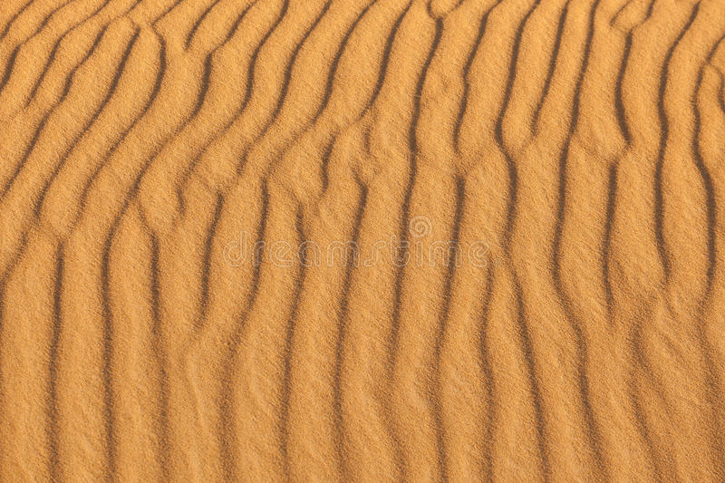 Download Sand waves in the beach stock photo. Image of dune, ripple - 28733810