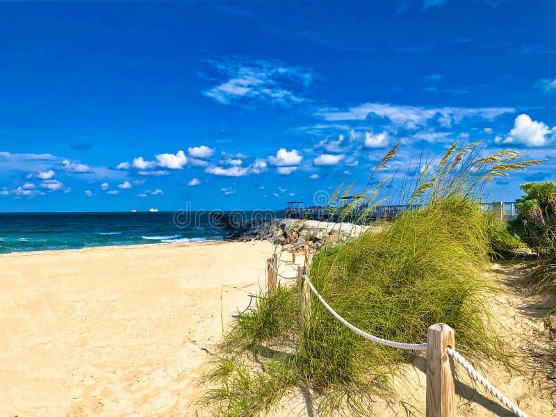 South Beach Miami Florida. Sand and wild grasses surround the tan sandy beach of South Beach Miami Florida stretching to the blue Atlantic Ocean royalty free stock image