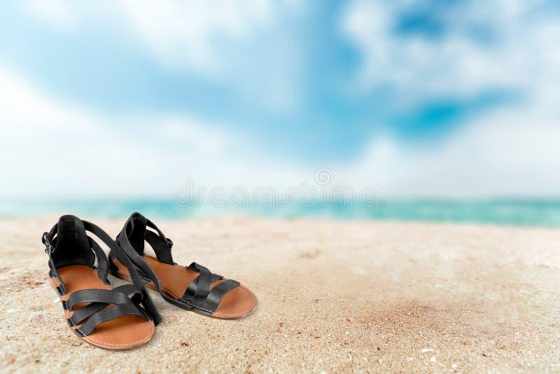 sandal royaltyfria bilder