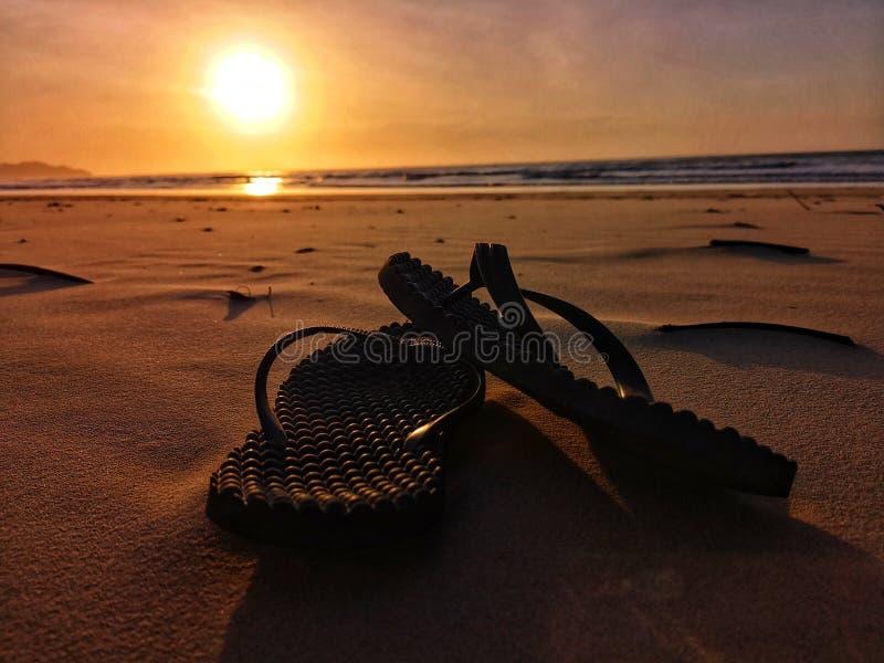 Sandal på stranden under solnedgången royaltyfria foton