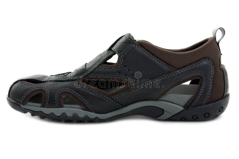 Download Sandal shoe stock image. Image of color, leather, flop - 15075319
