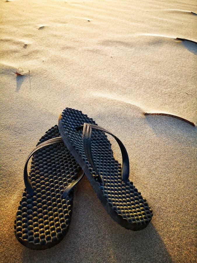 Sandale sur la plage pendant le coucher du soleil image libre de droits