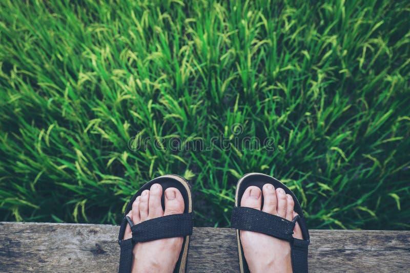 Sandales dans les vacances photographie stock libre de droits