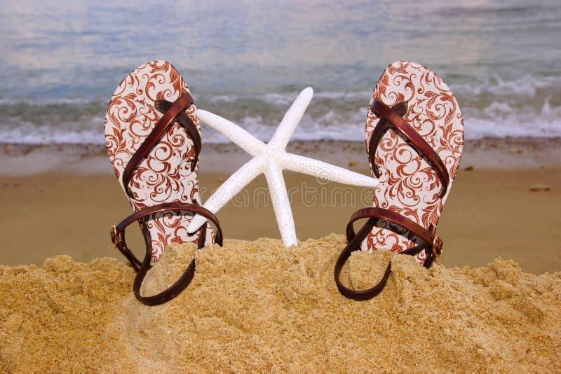 Sandales et étoiles de mer en caoutchouc de talon-Strup de mode femelle sur le Bea images stock