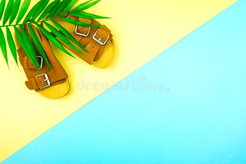Sandales et un brin des palmiers sur un fond ? la mode de couleur jaune-bleue image stock