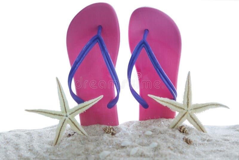 Sandali e stelle di mare sulla sabbia immagini stock libere da diritti