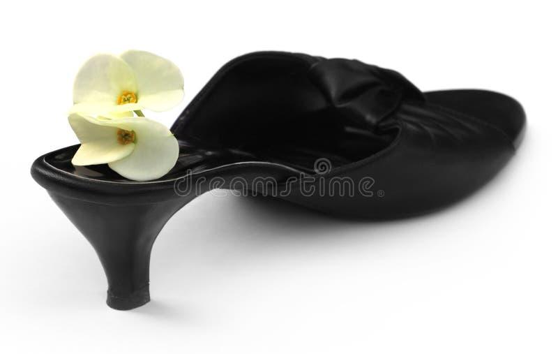Sandalia de la mujer con una flor del cactus imagenes de archivo