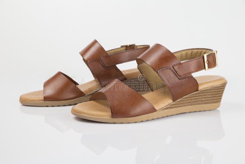 Sandalia elegante de cuero marr?n femenina fotografía de archivo libre de regalías