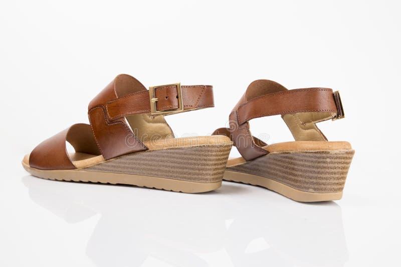 Sandalia elegante de cuero marr?n femenina imagen de archivo libre de regalías