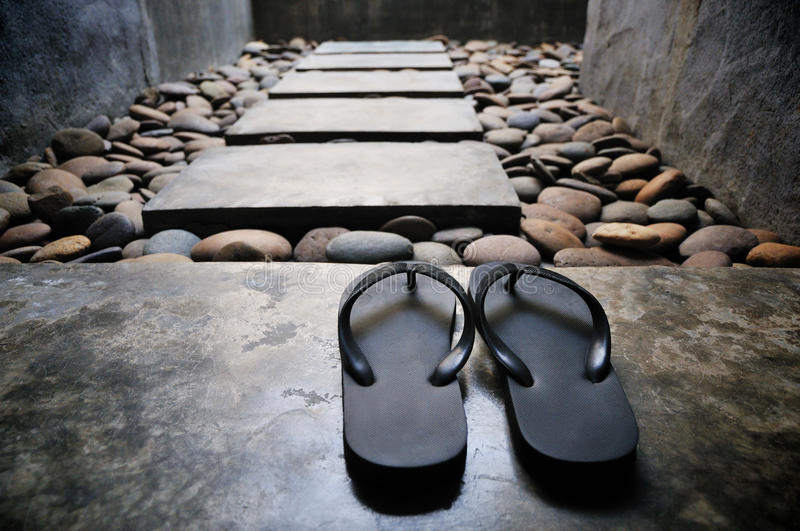 Download Sandals stock photo. Image of accessory, nature, sandals - 18437036
