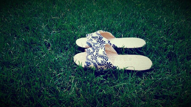 Sandals royalty-vrije stock foto