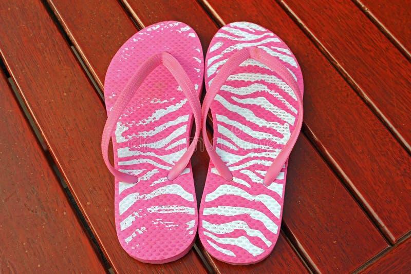 sandals in för misslyckandear för bakgrundsstrandflip isolerade ställde illustrationen vektorn vit arkivfoton