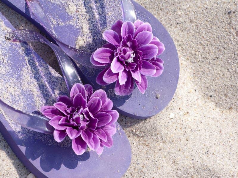 Sandals op strandzand stock afbeelding