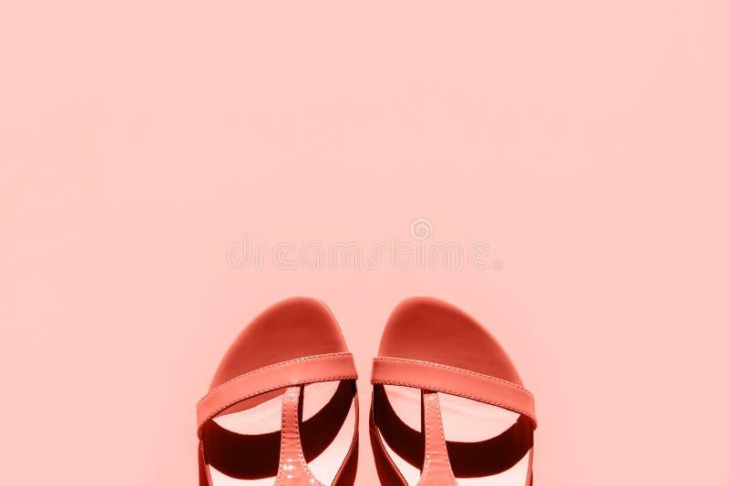 Sandals van oranje modieuze vrouwen op een roze achtergrond royalty-vrije stock fotografie