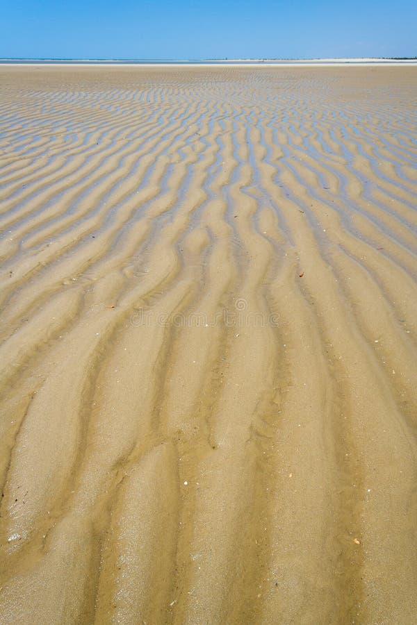 Download Sandbank At Low Tide Royalty Free Stock Photography - Image: 23585977