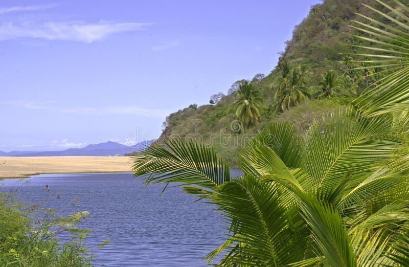 sandbank pacific океана лимана стоковые фото