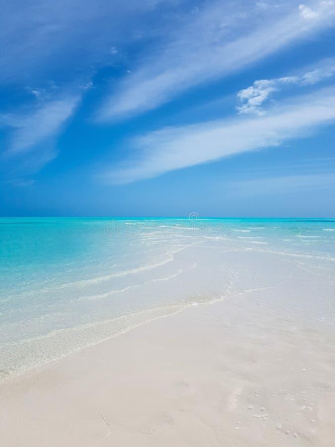 Sandbar in de Bahamas royalty-vrije stock foto's