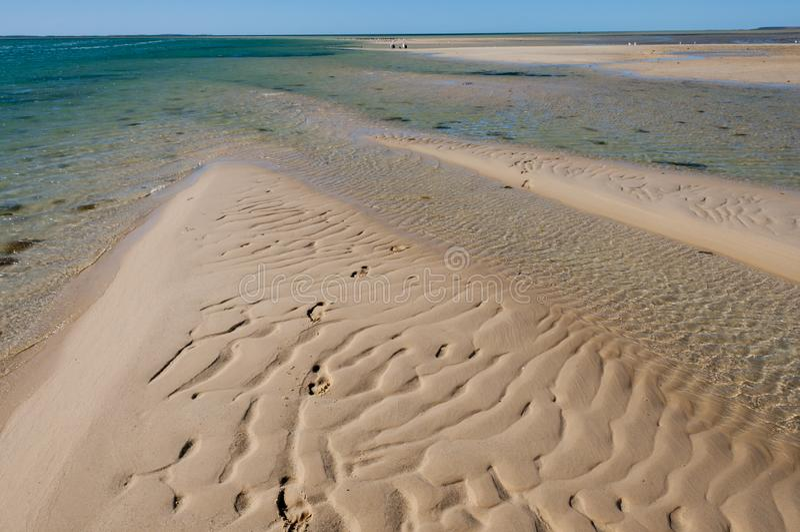 Sandbar i apan Mia royaltyfri fotografi