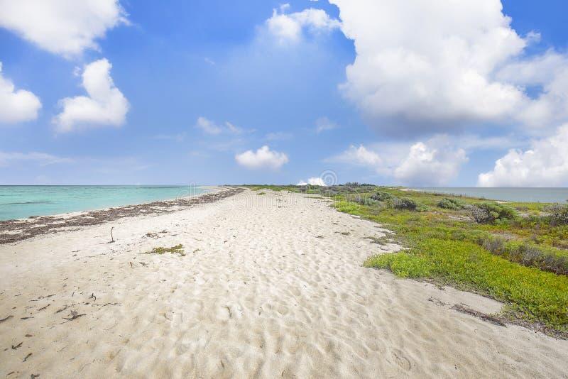 Sandbar stock photography