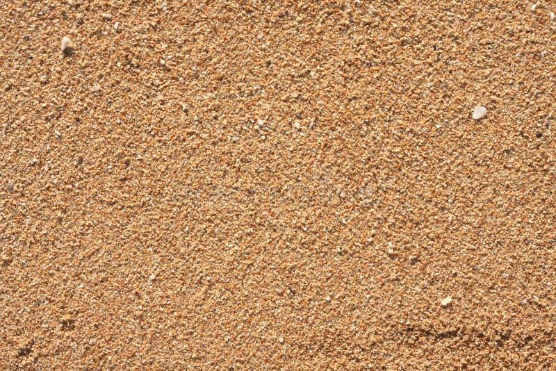 Sandboden stockfoto bild von sch n farbe elegant frech for Nivelar piso de tierra