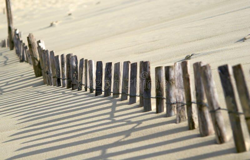 Sanddüne stockfotos