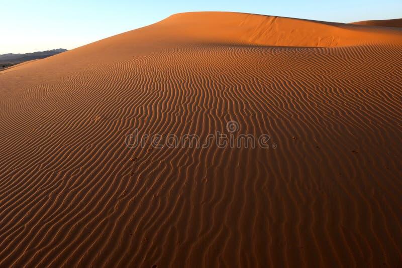 Sanddüne in der Sahara-Wüste stockfotografie