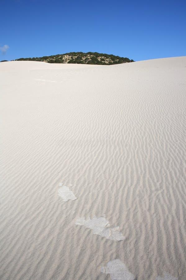 Sanddüne - Karpazi, Nordzypern lizenzfreie stockfotos